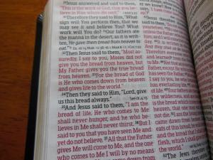 Bible Review NKJV Compact Large Print Holman 021