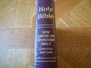nasb lockman bible review 009
