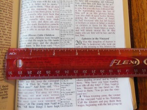 nasb lockman bible review 024
