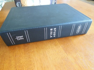 tbs and nkjv study bible 041