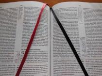 tbs and nkjv study bible 060