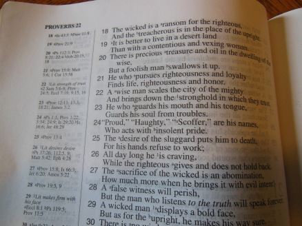 NASB Reference Bible Genuine Calfskin Black 014