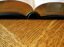 NASB Reference Bible Genuine Calfskin Black 017