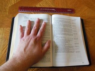 NASB Reference Bible Genuine Calfskin Black 035