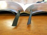 NASB Reference Bible Genuine Calfskin Black 052