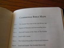 Cambridge pitt minion 039
