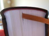 thomas nelson nkkv study bible hard cover 014