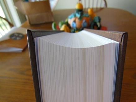 thomas nelson nkkv study bible hard cover 015