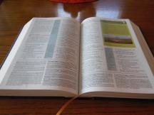 thomas nelson nkkv study bible hard cover 017
