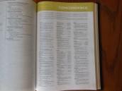 thomas nelson nkkv study bible hard cover 035