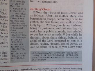 thomas nelson nkkv study bible hard cover 073