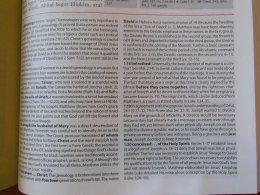 thomas nelson nkkv study bible hard cover 074