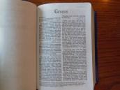three bibles 025