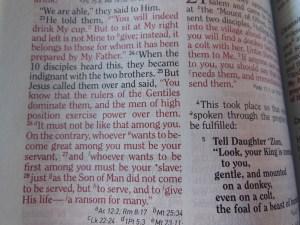 three bibles 032