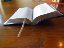 three bibles 044
