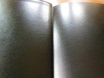 three bibles 072