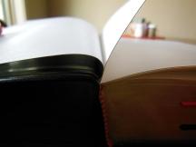 three bibles 073