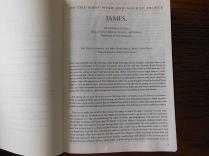 three bibles 086