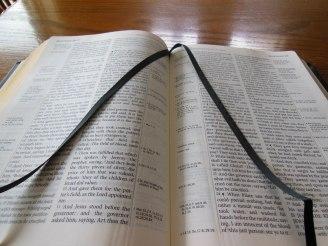 three bibles 089