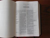 three bibles 095