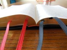 three bibles 105