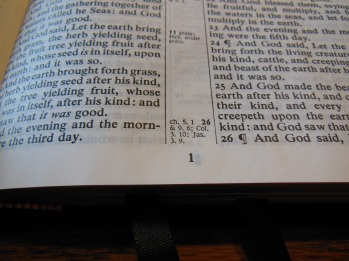 cambridge kjv, holman ministers kjv and funky lil kjv 045