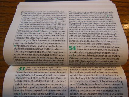 cambridge kjv, holman ministers kjv and funky lil kjv 125