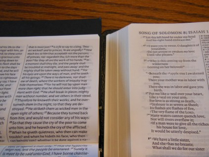 cambridge kjv, holman ministers kjv and funky lil kjv 136
