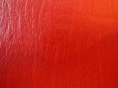Evidence KJV LCBP Red Wide Margin LCBP Black Hand Size 011