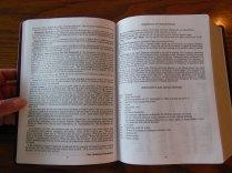 NASB Giant Print Burgundy 030