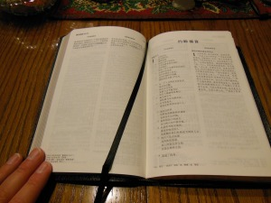 chinese new testament and greek book with workbook holman 011