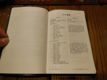 chinese new testament and greek book with workbook holman 020