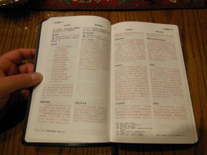 chinese new testament and greek book with workbook holman 021