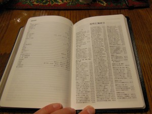 chinese new testament and greek book with workbook holman 027