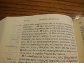 greek rsv nt 010