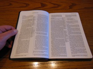 Passio MEV Bible 025
