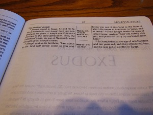Passio MEV Bible 027