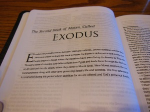 Passio MEV Bible 028