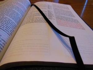 Passio MEV Bible 029