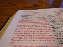 Passio MEV Bible 031