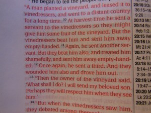 Passio MEV Bible 032