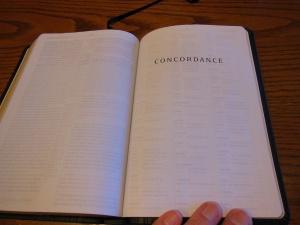 Passio MEV Bible 033