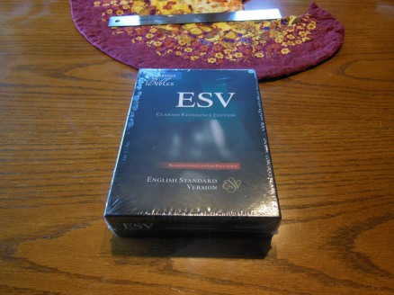 Cambridge ESV Clarion and REB 041