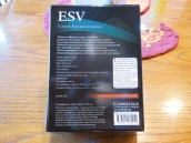 Cambridge ESV Clarion and REB 043