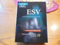 Cambridge ESV Clarion and REB 044