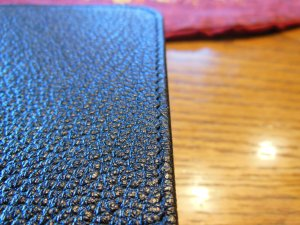 Cambridge ESV Clarion and REB 048