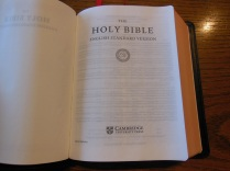 Cambridge ESV Clarion and REB 059