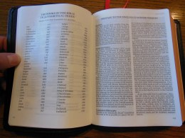 Cambridge ESV Clarion and REB 062