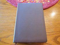 Holman woman's hcsb study bible 008