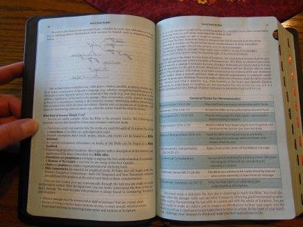 Holman woman's hcsb study bible 034